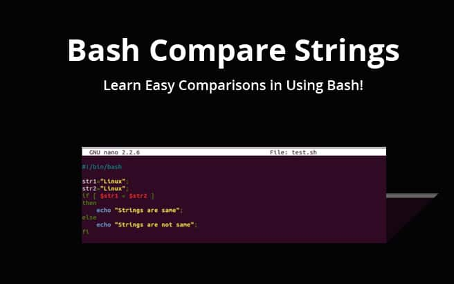 Bash Compare Strings – Learn about Equals, Not Equals, Greater than and Less than!